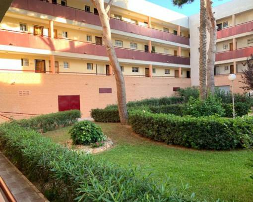 Apartment/Flat - Sale - Mil Palmeras - Mill Palmeras
