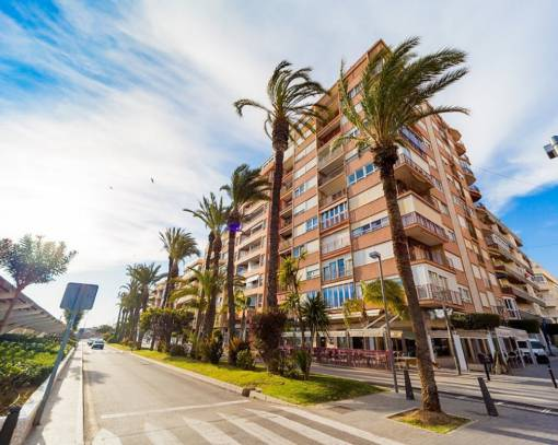 Apartment/Flat - Wederverkoop - Torrevieja - Paseo maritimo