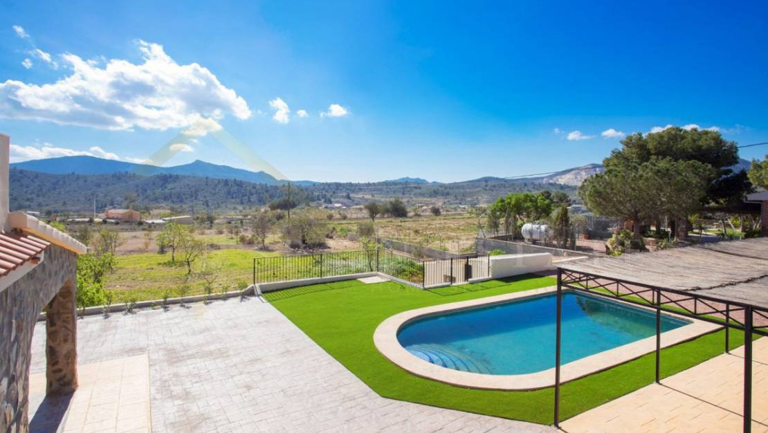 Swimming pool | Second-hand villa with pool for sale in Hondón de las Nieves